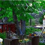 Çiçekliköy My Garden İçeceğini ve Etini Al Gel ve Mezeler Eşliğinde Mangal Keyfi